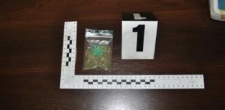 Trafił do aresztu za posiadanie marihuany