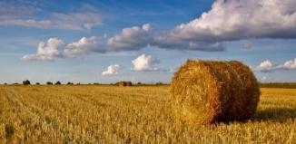 Wijewo: Szkolenie dla rolników