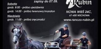 Mistrzostwa Polski Amatorów w Powożeniu Zaprzęgami